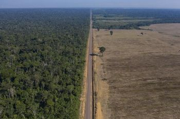BRAZIL. In this November 25, 2019 photo, highway BR-163 stretches between the Tapajos National Forest (left) and a soy field in Belterra, Para state, Brazil. Carved through jungle during Brazil's military dictatorship in the 1970s, this highway and BR-230, known as the Trans-Amazon, were built to bend nature to man's will in the vast hinterland. Four decades later, there's development taking shape, but also worsening deforestation. (AP)