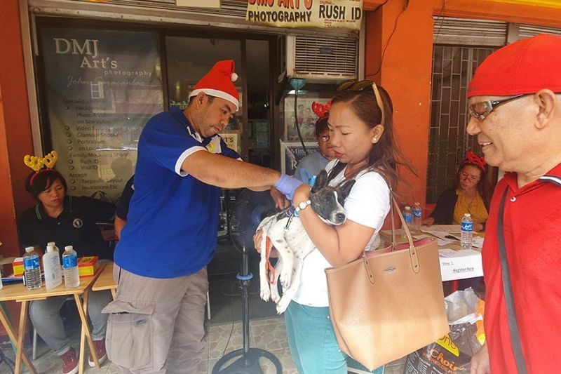 AKLAN. Dr. Ronald Lorenzo injects a medication to a dog availing of free services. (Jun N. Aguirre)