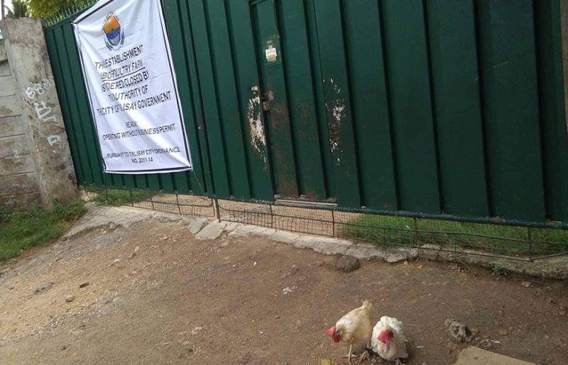 GATE SA POULTRY FARM: Ang gate sa poultry farm sa Sitio Libo, Barangay Mohon, dakbayan sa Talisay nga gibutangan og dakong tarpulin nga nakasuwat ang closure order. (Fe Marie Dumaboc)