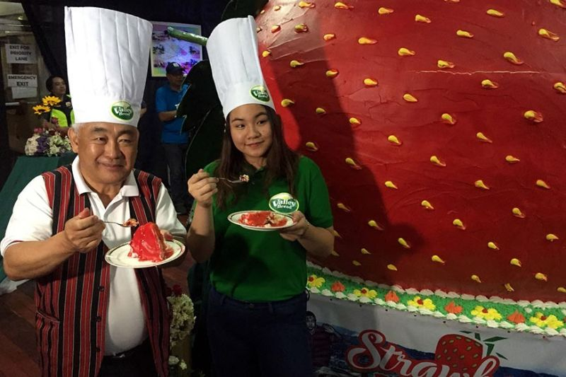 TASTY. La Trinidad Mayor Romeo with Valley Bread's Angela Espadero tastes the giant strawberry cake weighing 1.6 tons served to 12,000 people on March 23, 2019 at the Lednicky Hall. The town is mapping out plans for the 2020 staging of the annual festival. (Photo by Jean Nicole Cortes/SSB file)