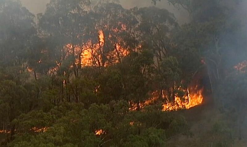 AUSTRALIA. In this image made from a video, an aerial scene showsfires burning in Bundoora, Victoria state, Monday, December 30, 2019. New Year's Eve fireworks in Australia's capital and other cities have been canceled as the wildfire danger worsens in oppressive summer heat, and pressure was building for Sydney's iconic celebrations to be similarly scrapped. (AP)