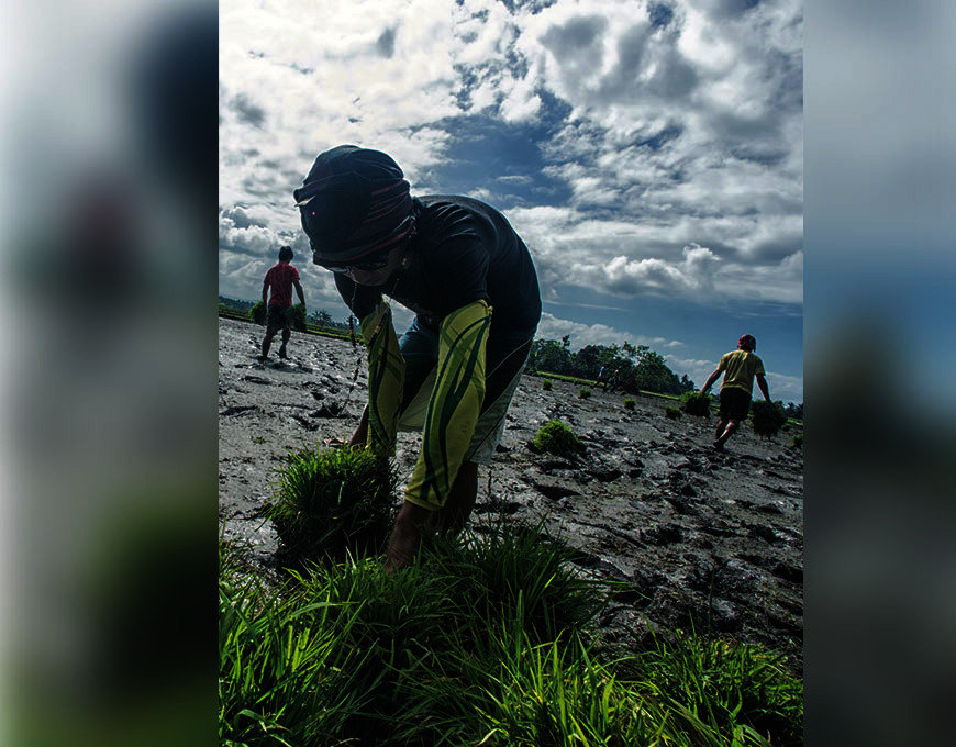A student of Bagumbayan Agro-Industrial High School Lupon, Davao Oriental planting rice in a rice field. (Photo by C. Dacumos/Youth and Agriculture Infomediary Campaign material)