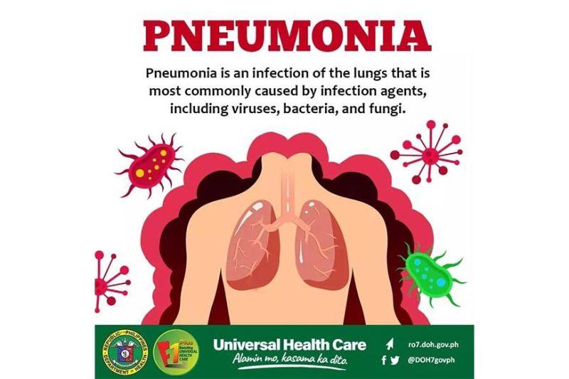(Bureau of Quarantine Cebu facebook)