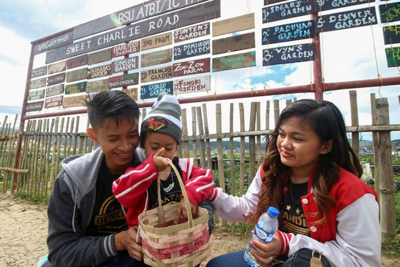 BENGUET. A family checks on the quality of strawberries freshly picked from a farm in La Trinidad. With more tourists flocking Benguet's capital town, valley officials are seeking to address challenges faced by the town's tourism industry. (Jean Nicole Cortes)