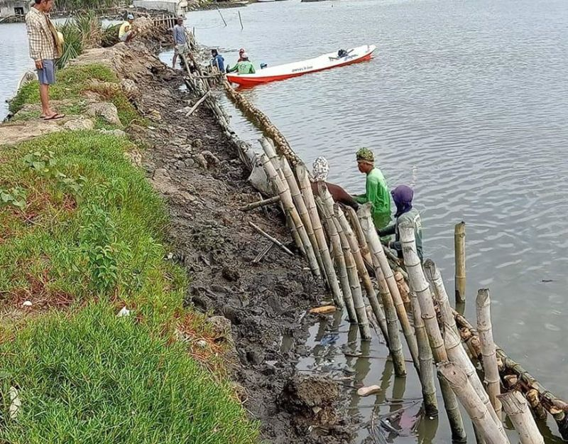 PAMPANGA. Coastal residents volunteer as workers for the reconstruction of a spur dike in Masantol town that is intended to spare the communities at the left bank portion of the Pampanga River from year-round flooding. (Contributed photo)