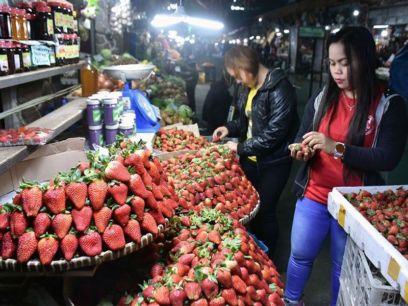 BAGUIO. Vendors at the Baguio Public Market sort fresh strawberries from Madaymen in Kibungan, Benguet. Prices of strawberry increased up to P700 pesos per kilo at the Baguio Public Market and P800 per kilo at the La Trinidad Strawberry Farm for the strawberry picking during the holiday season. (Photo by Redjie Melvic Cawis)