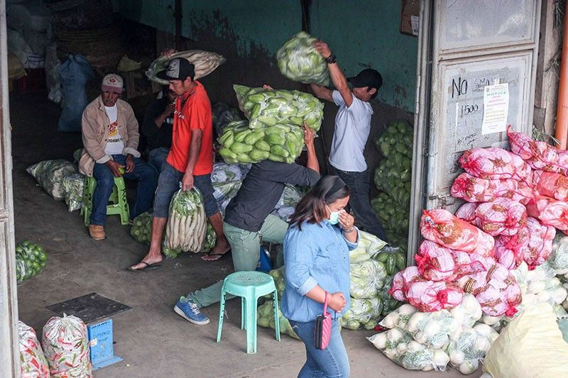 LIFEBLOOD. Considered as micro, small and medium enterprises, vegetable trading is considered one of the top industry in Benguet, aside from mining, providing livelihood for thousands of residents in the province. (Jean Nicole Cortes)