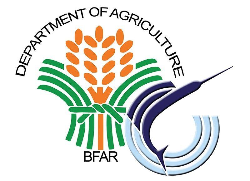 (Logo grabbed from BFAR-Central office's Facebook)