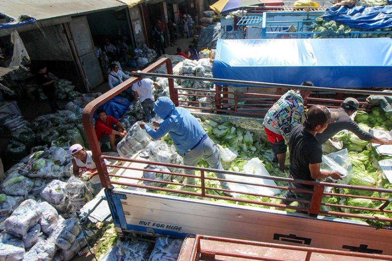 BAGUIO. Packers sort vegetables at the La Trinidad trading post. Tons of highland vegetables are brought to the trading post which serve as one of main hubs for selling produce in Benguet and nearby provinces. (Photo by Jean Nicole Cortes)