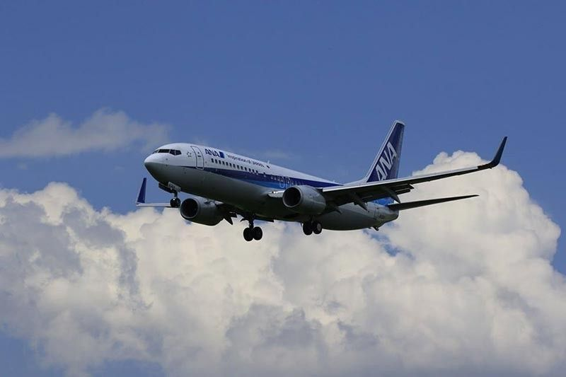 Photo from All Nippon Airways