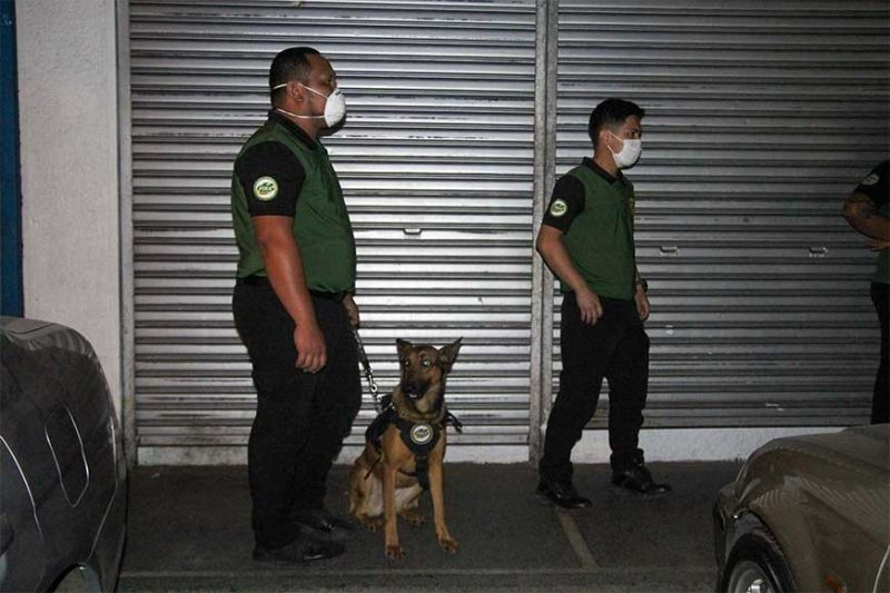 BAGUIO. Philippine Drug Enforcement Agency (PDEA) agent with his K-9 dog inspects the vehicle of the drug suspect nabbed at a commercial building along Bonifacio Road Baguio City Wednesday night. (Photo by Jean Nicole Cortes)