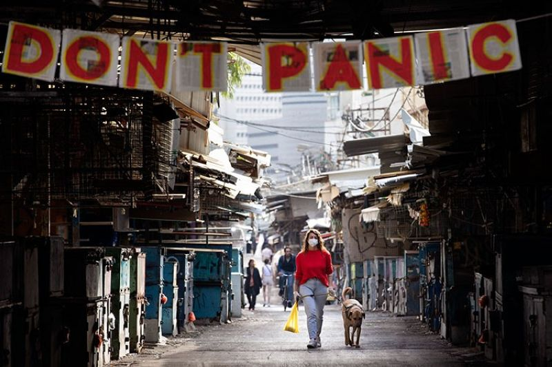 ISRAEL. A woman walks her dog under a