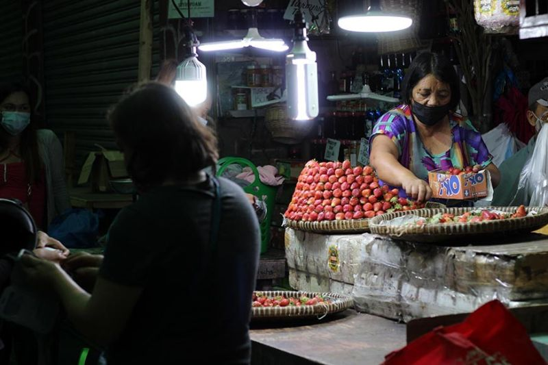 BAGUIO. A vendor sells strawberries at the Baguio Public Market at rock bottom prices since the Luzon-wide enhanced community quarantine. Transport of goods from the highlands to markets in the lowlands has been a struggle. Strawberries are being sold for as low as P100 in the public market. (Photo by Jean Nicole Cortes)