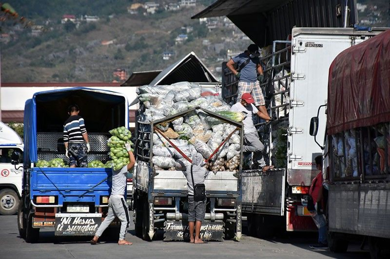LA TRINIDAD. Vegetable trading continues at the Benguet Agri-Pinoy Trading Center but workers are urged to use protective equipment such as gloves and facemasks to help prevent the spread of Covid-19. (Photo by Redjie Melvic Cawis)