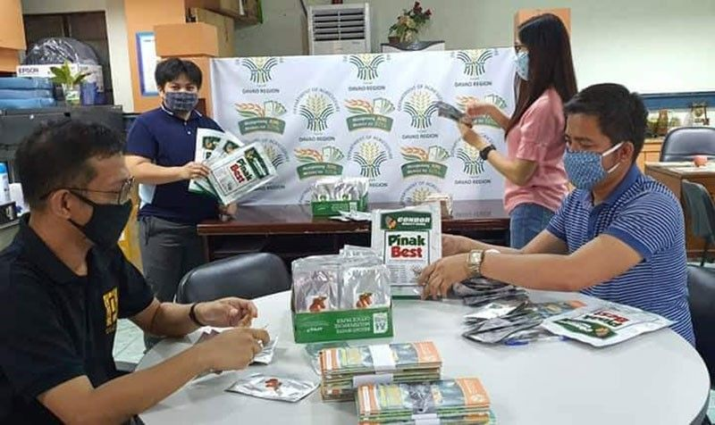 DAVAO. Personnel of the High-Value Crops Development Program (HVCDP) prepares the packed vegetable seeds for distribution to the public. (Photo from DA-Agri Info Facebook page)