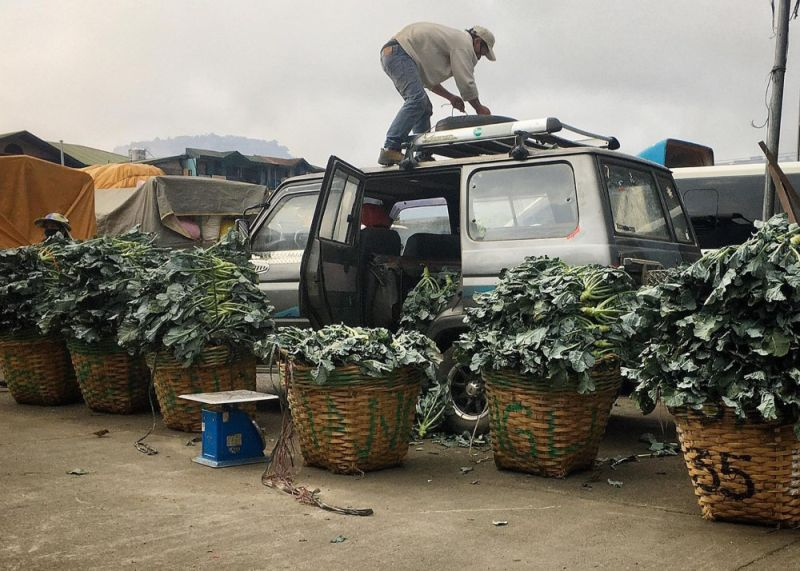 BAGUIO. Despite the threat of Covid-19, life goes on for farmers in Benguet as they deliver fresh vegetables to the La Trinidad Trading Post. (Photo by Chris Andrey Pagulayan)
