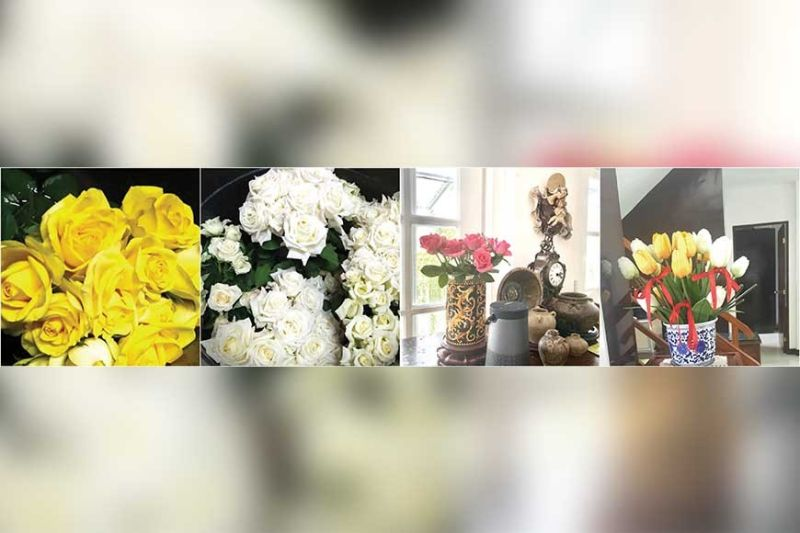 Nellie Chiu shared her beautiful floral arrangements to cheer up the Zontians.