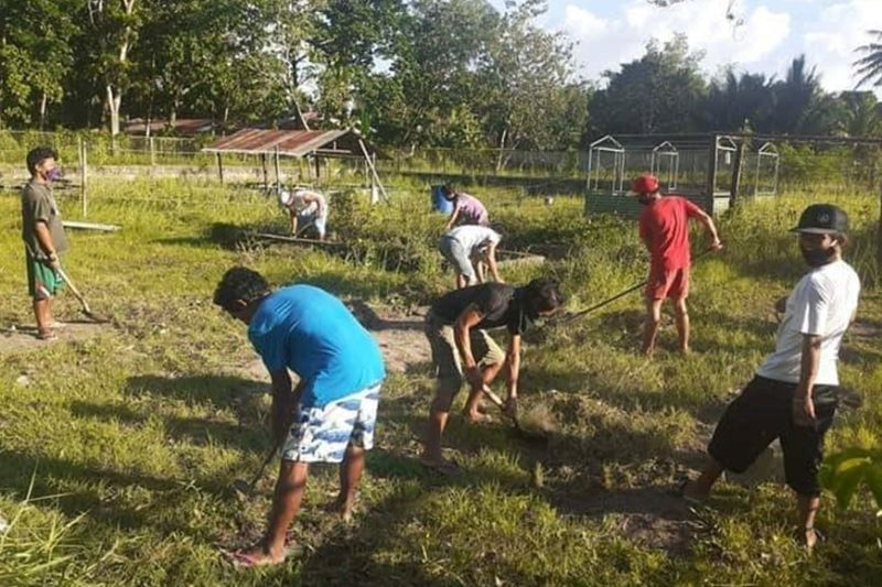BACOLOD. The residents transform the back area of the campus into a shared community garden. (Randy James Rojo)