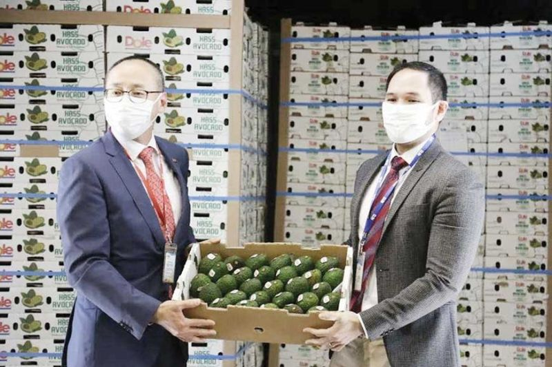 NEW MARKET. From left, Terry Chan, general manager of Dole China, and vice consul Mario Tani of the Philippine Trade and Investment Center Shanghai show off the Philippine avocados that entered China on March 31, 2020. The avocados will be first sold by Alibaba Group's supermarket chain Hema Xiansheng. (Photo from DTI Website)