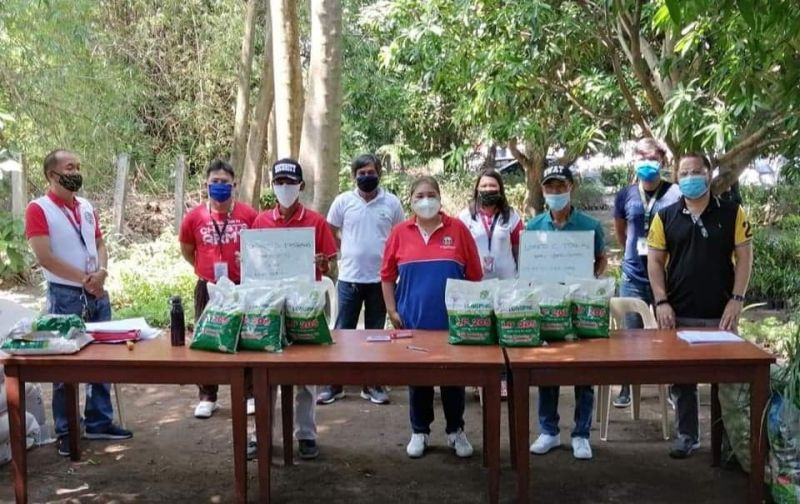 Angeles City Vice Mayor Vicky Vega-Cabigting and executive assistant Raffy Angeles distribute hybrid seeds to farmers and at the same time receive vegetables for frontliners. (Chris Navarro)
