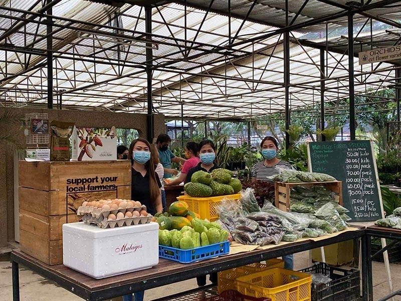DAVAO. From flowers to veggies -- the Puentespina Garden in Agdao, which used to be an orchid and ornamental flower garden, is now the main operations center of an online farm fresh grocery. (Contributed photo)