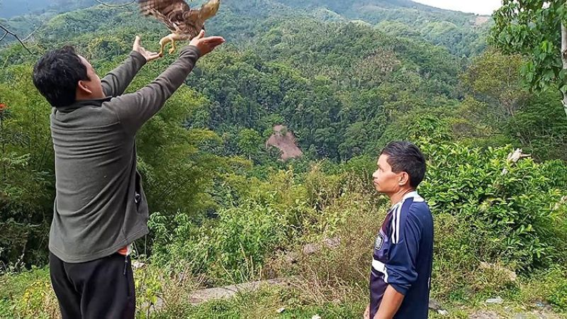 DAVAO. Water guard Renante Apal served as the caretaker for the injured Serpent Eagle. Three days later, Apal freed the bird to the wild, its habitat. (Contributed photo)