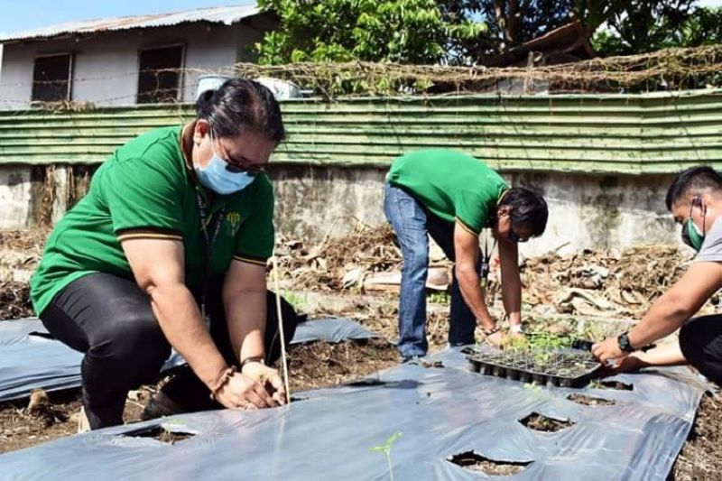 FOOD SUFFICIENCY. Department of Agriculture-Western Visayas Regional Executive Director Remelyn Recoter (left) said the agency is pushing for higher food sufficiency level in the region amid the pandemic. (Contributed Photo)