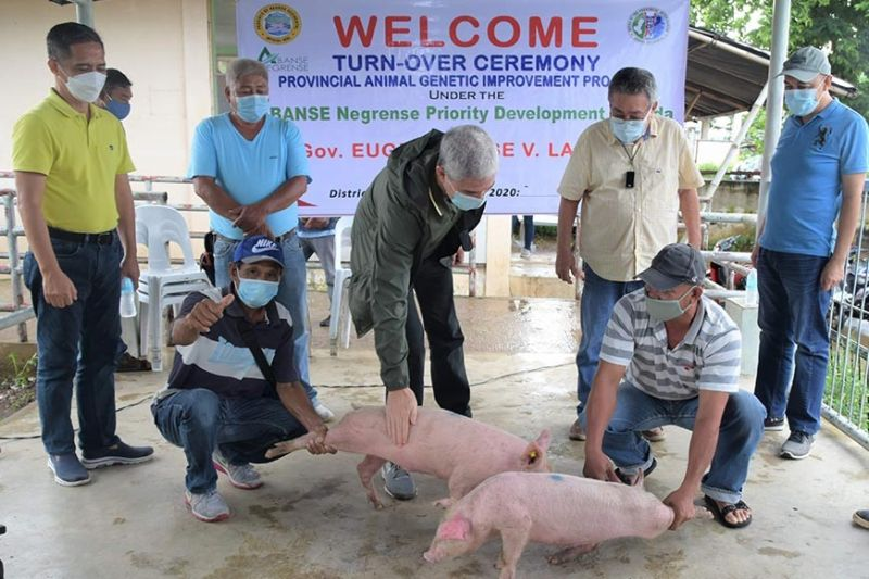 BACOLOD. Negros Occidental Governor Eugenio Jose Lacson (center) with Provincial Veterinarian Renante Decena (left) and Kabankalan City Mayor Pedro Zayco (second from right) leads the turnover of genetic improvement project in the city on August 5, 2020. (Richard Malihan Photo)
