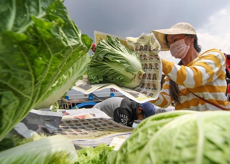 BAGUIO. Vegetable traders, packers and dealers are adapting to the new normal, which dictates the wearing of personal protective gear at work. (Jean Nicole Cortes)