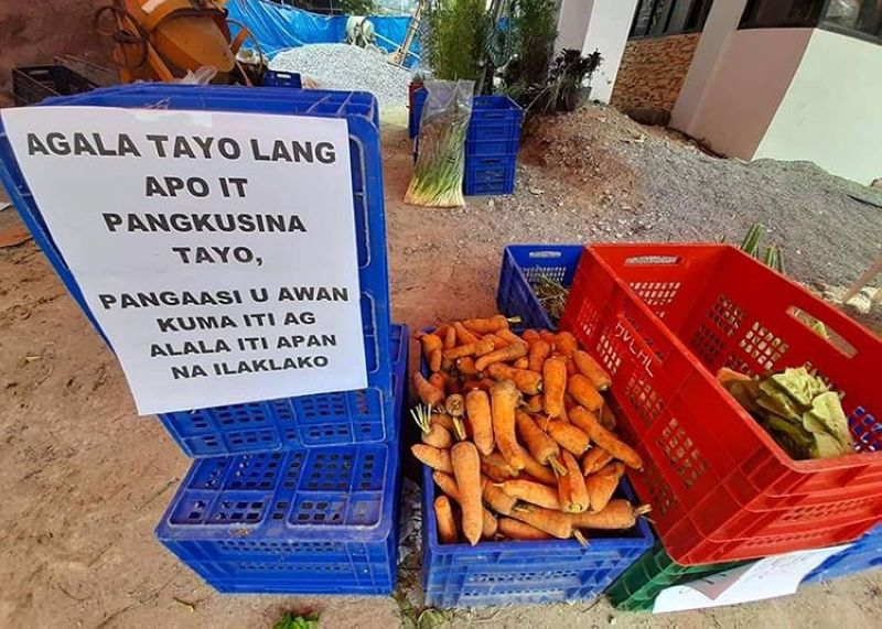FREE HIGHLAND VEGETABLES. Vegetables donated by farmers and traders of La Trinidad Vegetable Trading Post were given to the public while some officials bought vegetables to support farmers and those in need amid the Covid-19 pandemic. (La Trinidad Mayor's Office photo)
