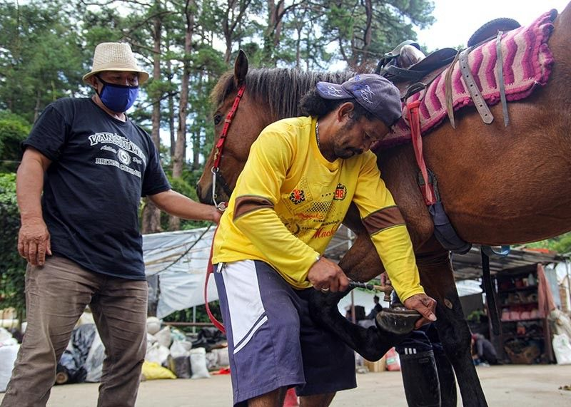 SADDLING UP. A ponyboy at Wright Park attaches a new horseshoe as Baguio City's parks reopen for locals. The Summer Capital is now drawing flak from neighboring towns when reportedly no coordination was made on the city's plan to open for tourists from Ilocos Region. (Photo by Jean Nicole Cortes)