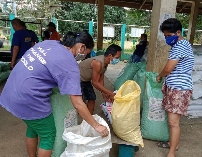 ZAMBOANGA. The Department of Agriculture-9, through the Special Area for Agricultural Development, has distributed Tuesday, October 20, 125 bags of unshelled peanut seeds and 300 bags of organic fertilizer to a farmer association in Dampalan Dapitan City, Zamboanga del Norte. A photo handout shows the farmers sort out the farm inputs given them. (SunStar Zamboanga)