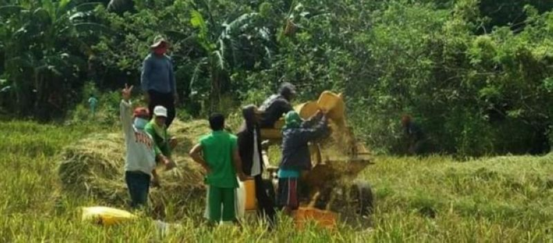 NEGROS OCCIDENTAL. For 2021, Negros Occidental is upbeat for stronger agriculture industry. (Contributed photo)