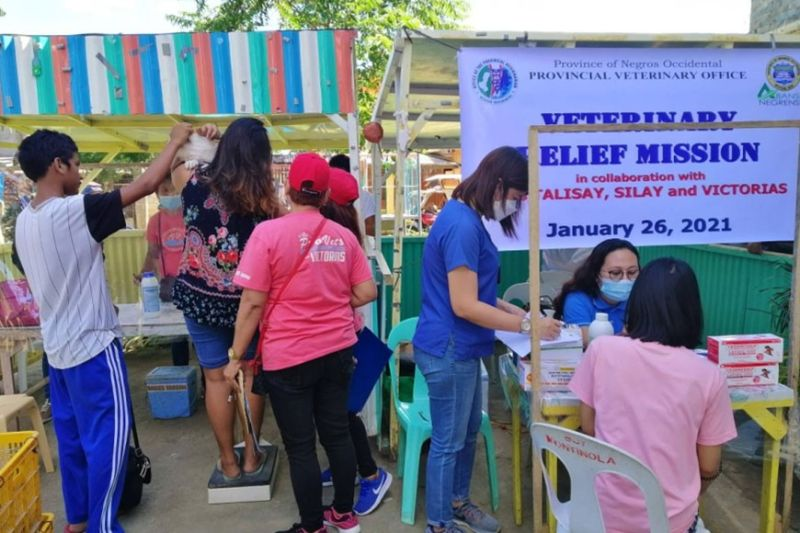 NEGROS. The simultaneous district-wide veterinary relief operations of the Provincial Veterinary Office in some of the areas in cities of Talisay, Silay and Victorias affected by the recent massive flooding Tuesday, January 26, 2021. (Contributed Photo)