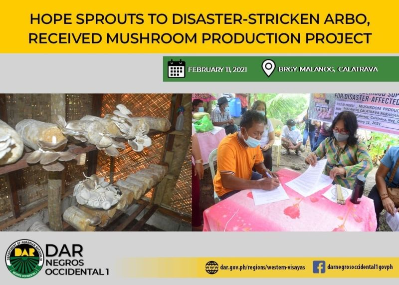 CALATRAVA. The Malanog Agrarian Reform Farmers Association at Barangay Malanog in Calatrava town receives a mushroom production business project from the Department of Agrarian Reform-Negros Occidental I recently. (Contributed photo)