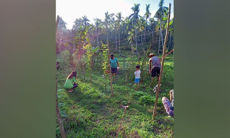 MARINDUQUE. Ate Arlyn and her family prepare their backyard garden for another cycle of planting. (Contributed photo)