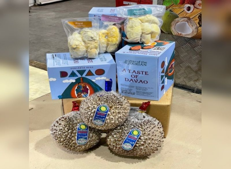 DAVAO. Durian from the Philippines now available in Australia. (Photo courtesy of Aus Asia Produce Pty Ltd)