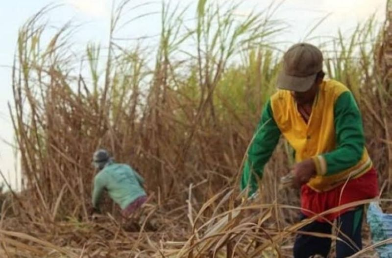 NEGROS OCCIDENTAL. The sugar industry stakeholders are calling the Sugar Regulatory Administration to terminate the seven percent US quota or
