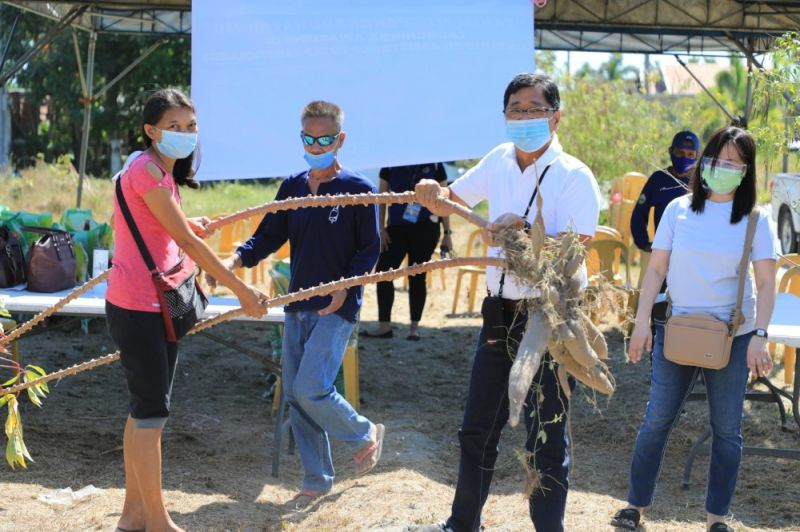 """TANIM MO, PANGKABUHAYAN MO. Mayor Edwin Santiago (2nd, right) shows cassava harvested from the city's """"Tanim Mo, Pangkabuhayan Mo"""" project during the launch of the Sustainable Livelihood Program in Barangay Alasas on April 12, 2021. (City of San Fernando Information Office)"""