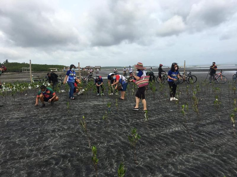 "BAGO. About 70 participants of the ""Bike and Mangrove Planting"" plant 500 mangroves in Barangay Sampinit in Bago City Wednesday as part of the Earth Day celebration in the province. (Olive Seruelo photo)"