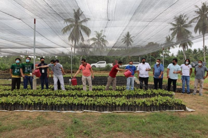 CACAO FARM: From left, hotelier Benny Que, Department of Agriculture 7 Director Salvador Diputado and entreprenuer Rey Calooy lead the ceremonial watering of cacao seedlings which will be planted in a two-hectare property in Valladolid, Carcar City that will serve as a cacao techno-demo farm. / DEPARTMENT OF AGRICULTURE 7