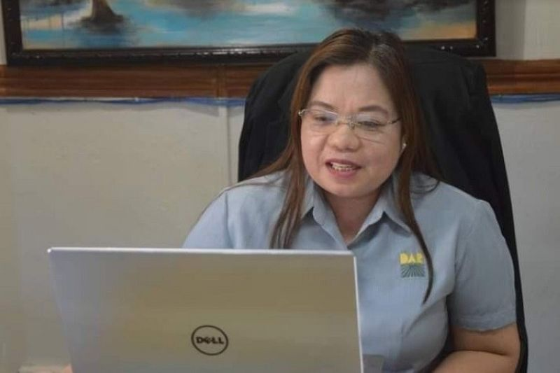 NEGROS. DAR-Western Visayas Regional Director Sheila Enciso leads the virtual conference with Municipal Agrarian Reform Program Officers in southern Negros Occidental June 4, 2021. (Contributed photo)