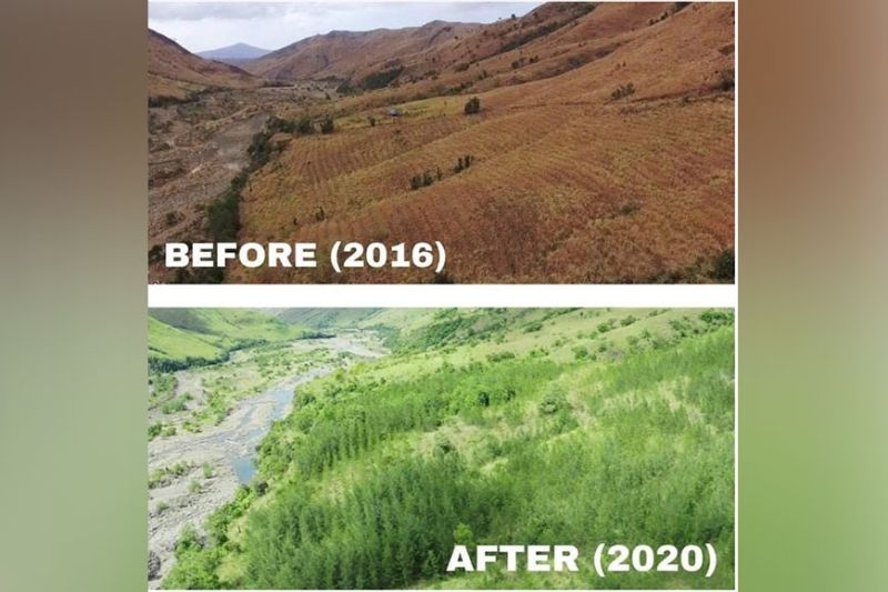 REHABILITATED FORESTLANDS. The rehabilitated forestlands and watersheds in Central Luzon. (DENR)
