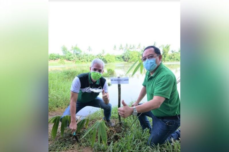 NEGROS OCCIDENTAL. Governor Bong Lacson and Victorias City Mayor Francis Frederick Palanca lead the planting of Bamboo at the Malogo watershed to boost access to a resilient water supply. (Provincial PIO)