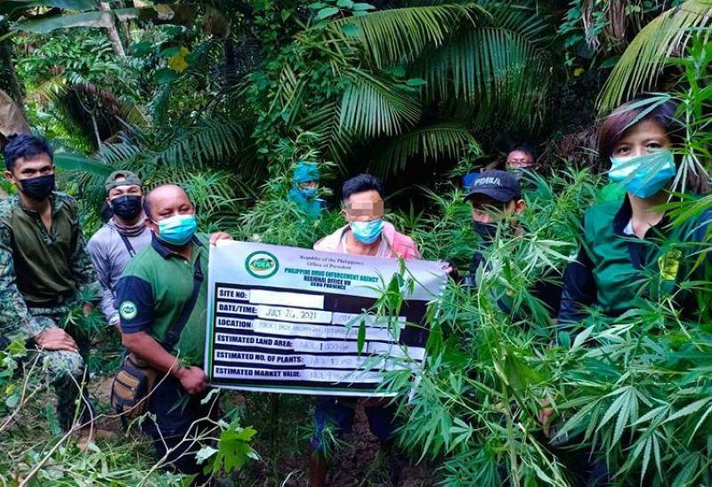 (Hulagway gikan sa Philippine Drug Enforcement Agency 7)