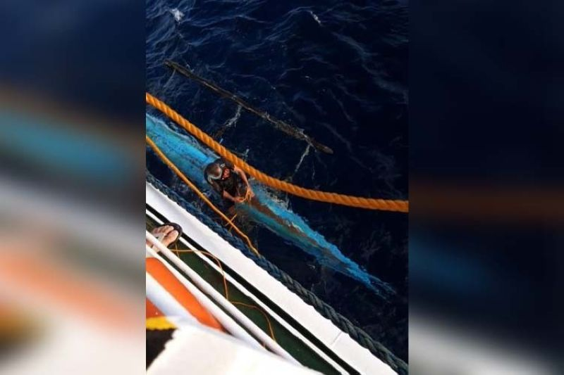 Lite Ferries rescues fisherman off Masbate waters (Photo from Lite Shipping Corp.)