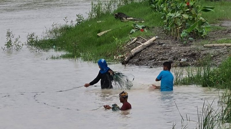 FISHING. Residents in Minalin town put up nets to catch fish that escaped from flooded fish pens in the area. (Chris Navarro)