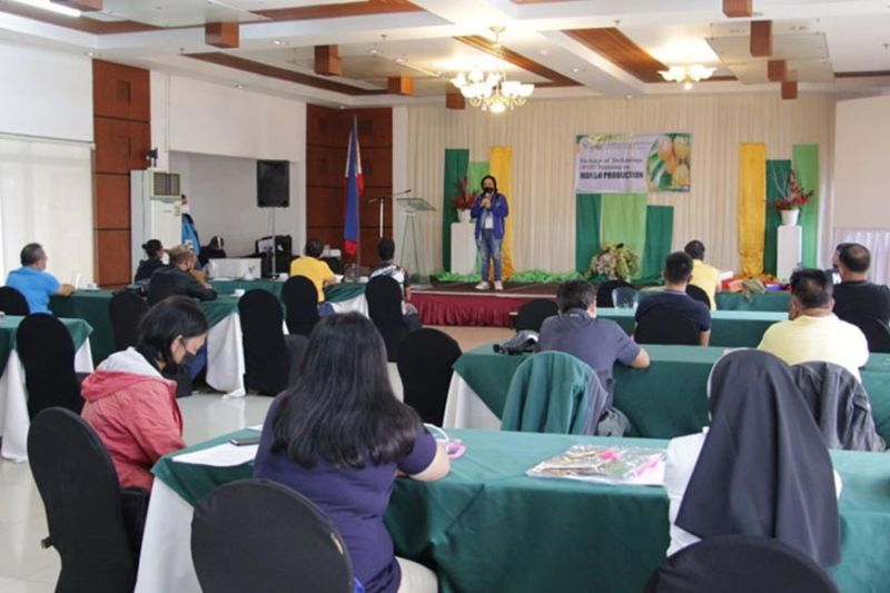 MANGO PRODUCTION. The Department of Agriculture, through its High-Value Commercial Development Program, conducted the first of its series of Package of Technology Training in this city. A photo handout shows the participants listening intently to one of the resource speakers during the two-day training from September 9 to 10 at the Marcian Business Hotel in Zamboanga City. (SunStar Zamboanga)