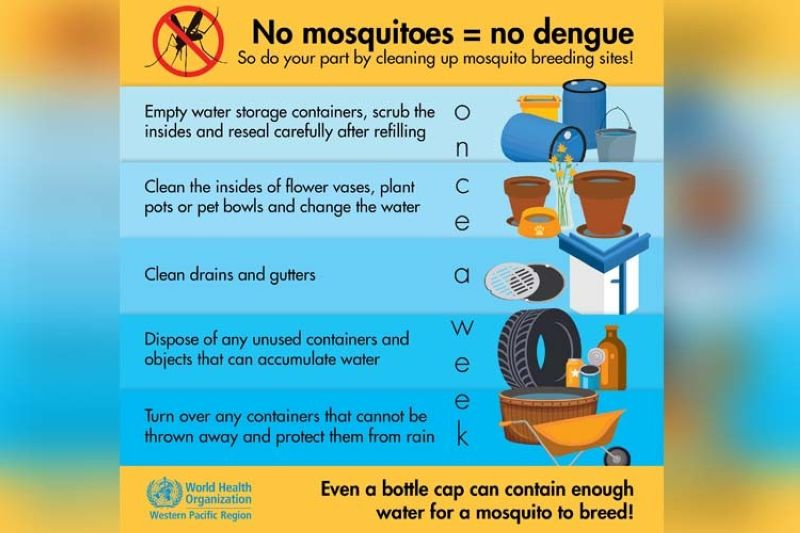 (Image from World Health Organization - Western Pacific Region's website)