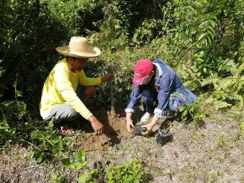 ON WORLD BAMBOO DAY. The Department of Environment and Natural Resources plants about 3,600 Kawayan tinik and Bayog propagules in various National Greening Program sites and forest reserves in Central Luzon in line with the observance of World Bamboo Day. (Photo by DENR)